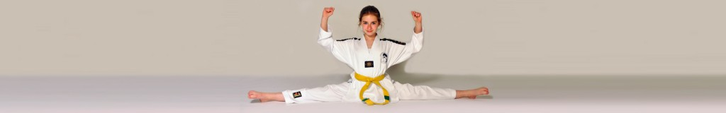 Shijak Taekwondo Den Haag